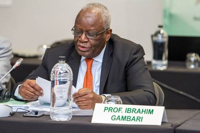 Profile and Biography of Ibrahim Gambari, Buhari's New Chief of Staff