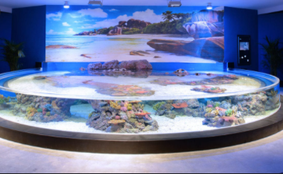 Largest Aquariums in the World 2021
