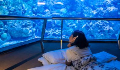 Biggest Aquariums in the World 2021