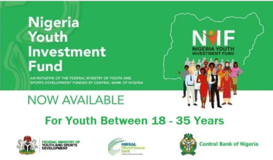 NYIF Loan Programme 2021: Application Portal, Registration and How to Apply