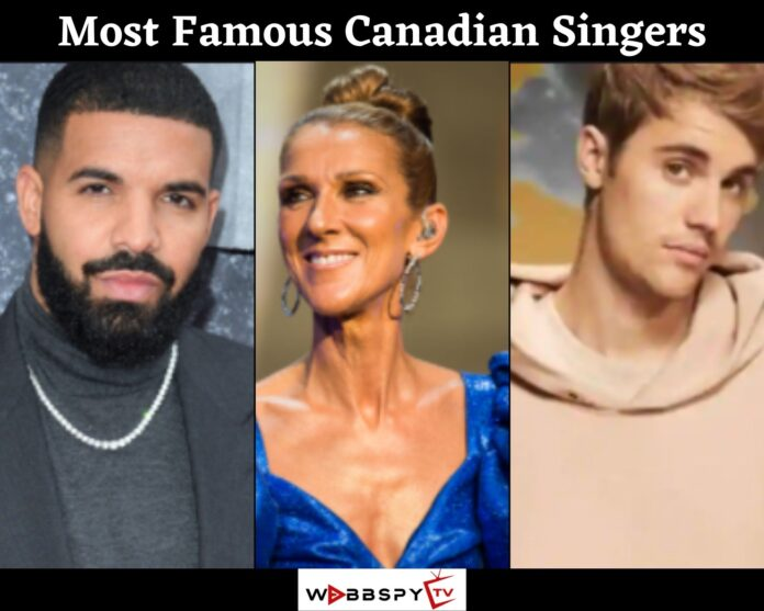 Top 10 Most Famous Canadian Singers In 2021