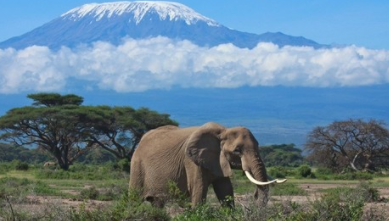 Top 10 Best Vacation Spots in Africa 2021