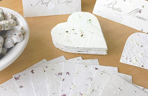 How to make paper from plants