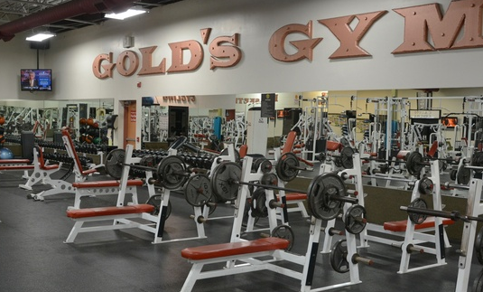Best Gym in India 2021