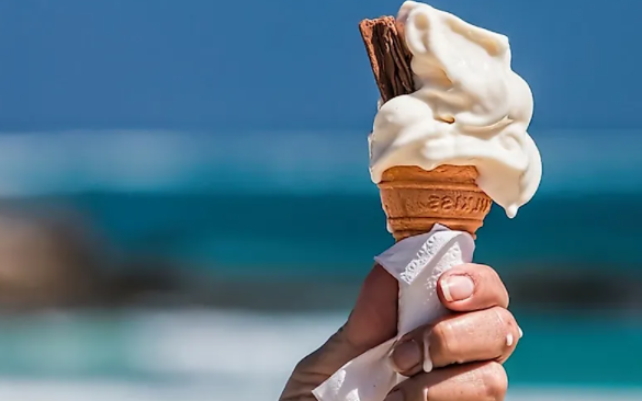 Top 10 Most Expensive Ice Cream Brands in World 2021