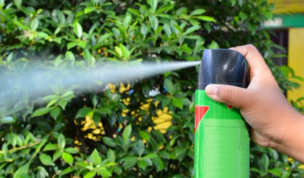 Top 10 Best Bug Sprays for Home Pest Control