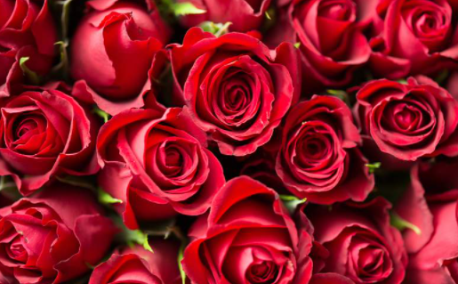 Romantic Valentine's day Poems and rhymes